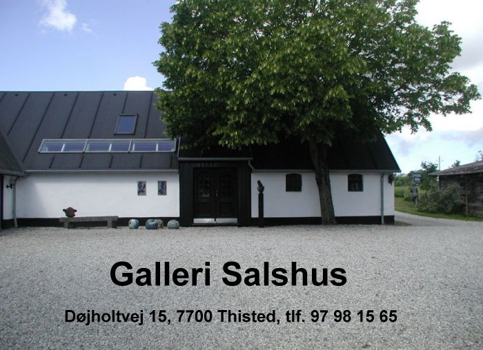 Billedresultat for salshus galleri